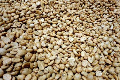 Nicaragua Reisen - Themenreise Kaffee