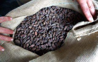 Nicaragua Fair Trade