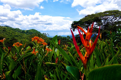 Spanisch Lernen in Nicaragua Matagalpa