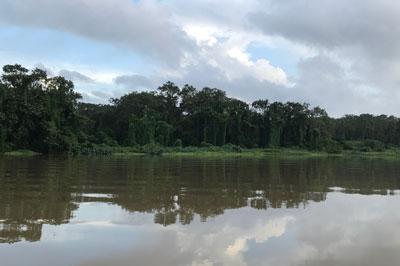 Reiseziel Panama Kanal Gamboa