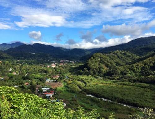 Auf den Spuren des Kaffeeanbaus in Costa Rica und Panama