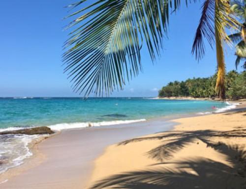 Loro Trips goes Costa Rica