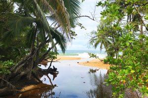 Bluff Beach Spanisch lernen Panama